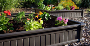 beautiful raised bed gardens