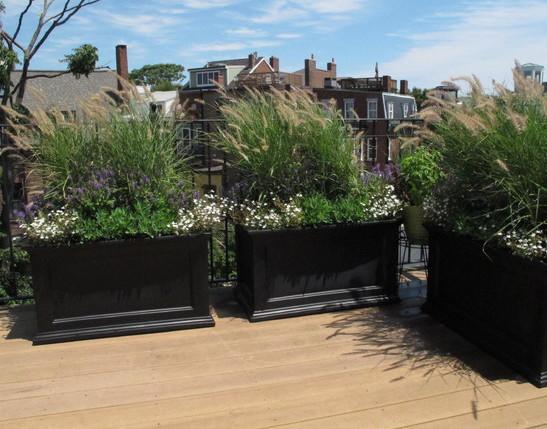 black wooden planter boxes
