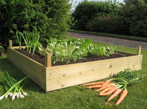 Building Raised Garden Boxes
