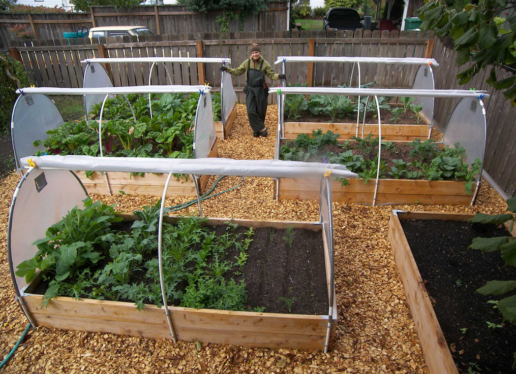 ideas for container vegetable gardening