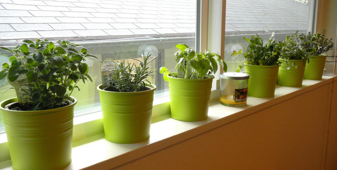 Indoor container vegetable gardening interesting ideas for Indoor vegetable gardening tips
