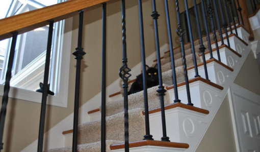 indoor wrought iron balusters