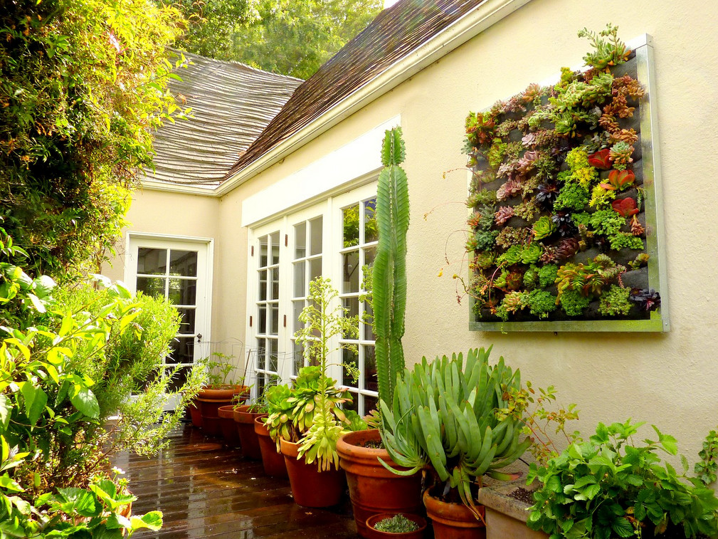 Living wall planter large vertical garden interesting for Home vertical garden