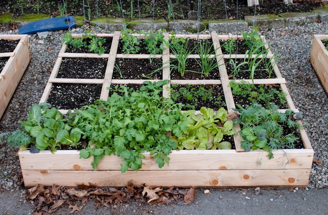 Outdoor raised garden box interesting ideas for home for Boxed garden designs