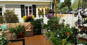patio vegetable garden containers