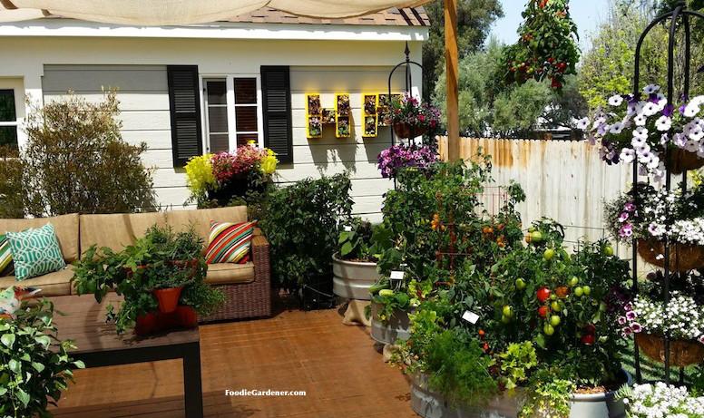 patio vegetable garden containers