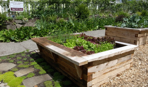 Raised Garden Box | Interesting Ideas For Home