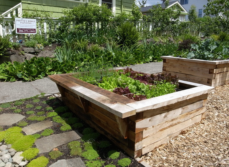 Raised garden box designs interesting ideas for home for Raised vegetable garden bed designs