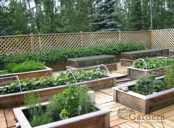 raised garden boxes for vegetables