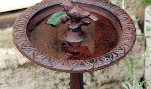 Bird Bath Pedestal Ideas
