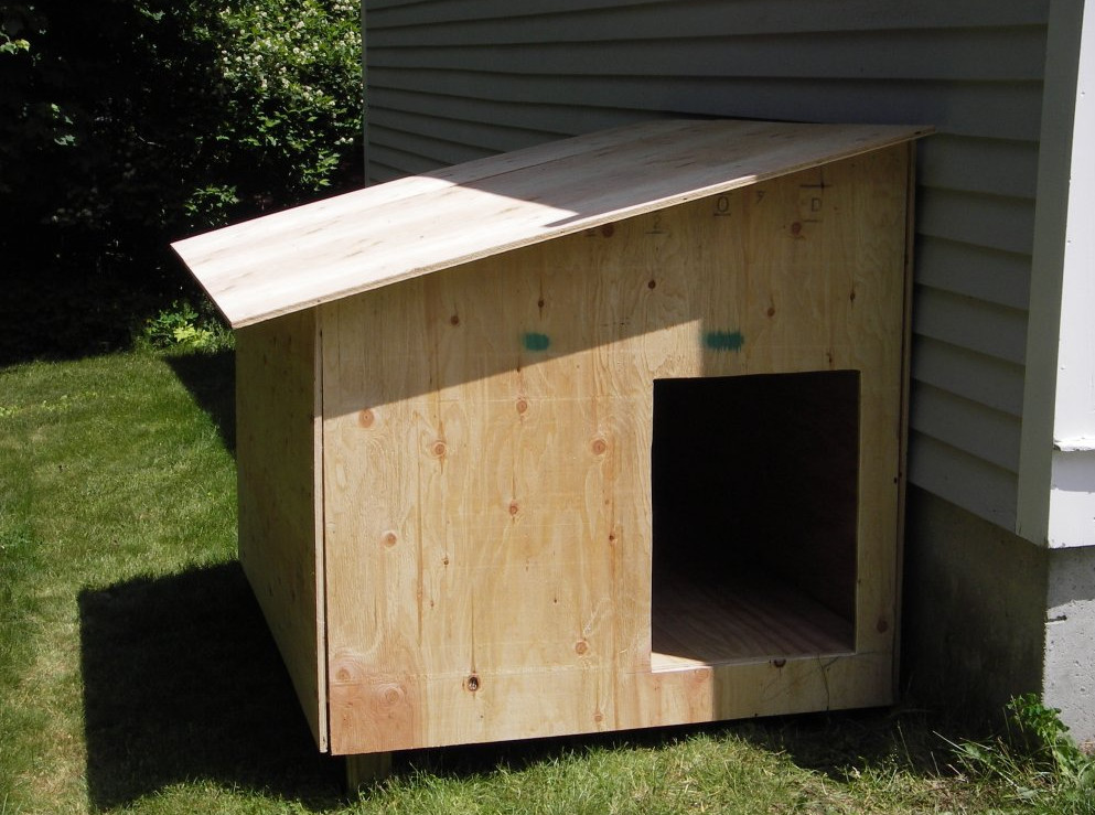 Build your Own Dog Kennel  6