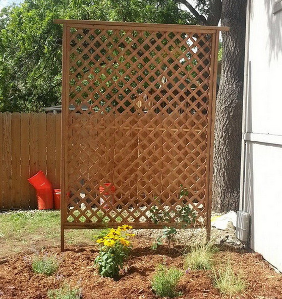 Free Standing Privacy Screen  6