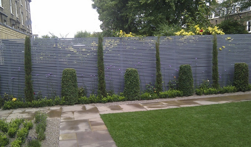 Good Trees For Privacy Screen Interesting Ideas For Home