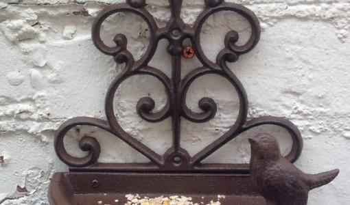 Wall Mounted Bird Bath Tips 2